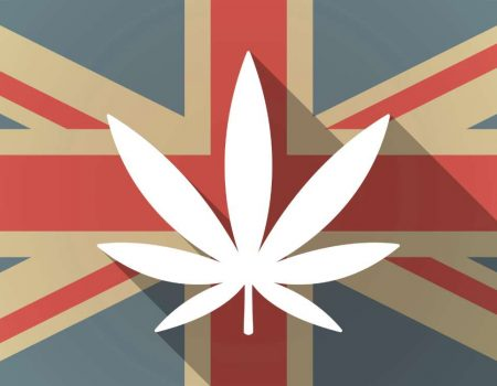 Which country exports the most medical cannabis?