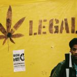 6 Reasons why cannabis legalization benefits all of us