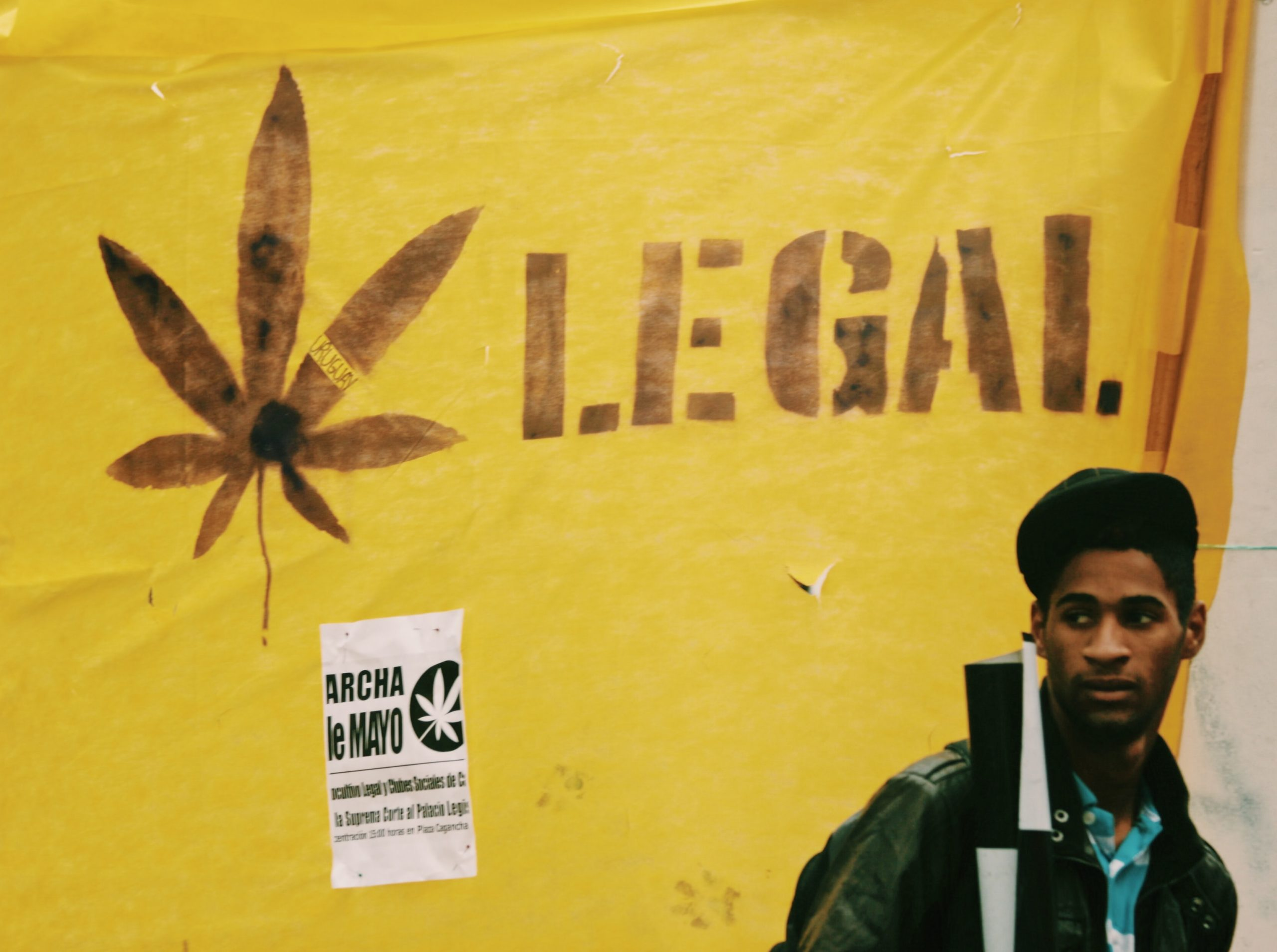 Read more about the article 6 Reasons why cannabis legalization benefits all of us