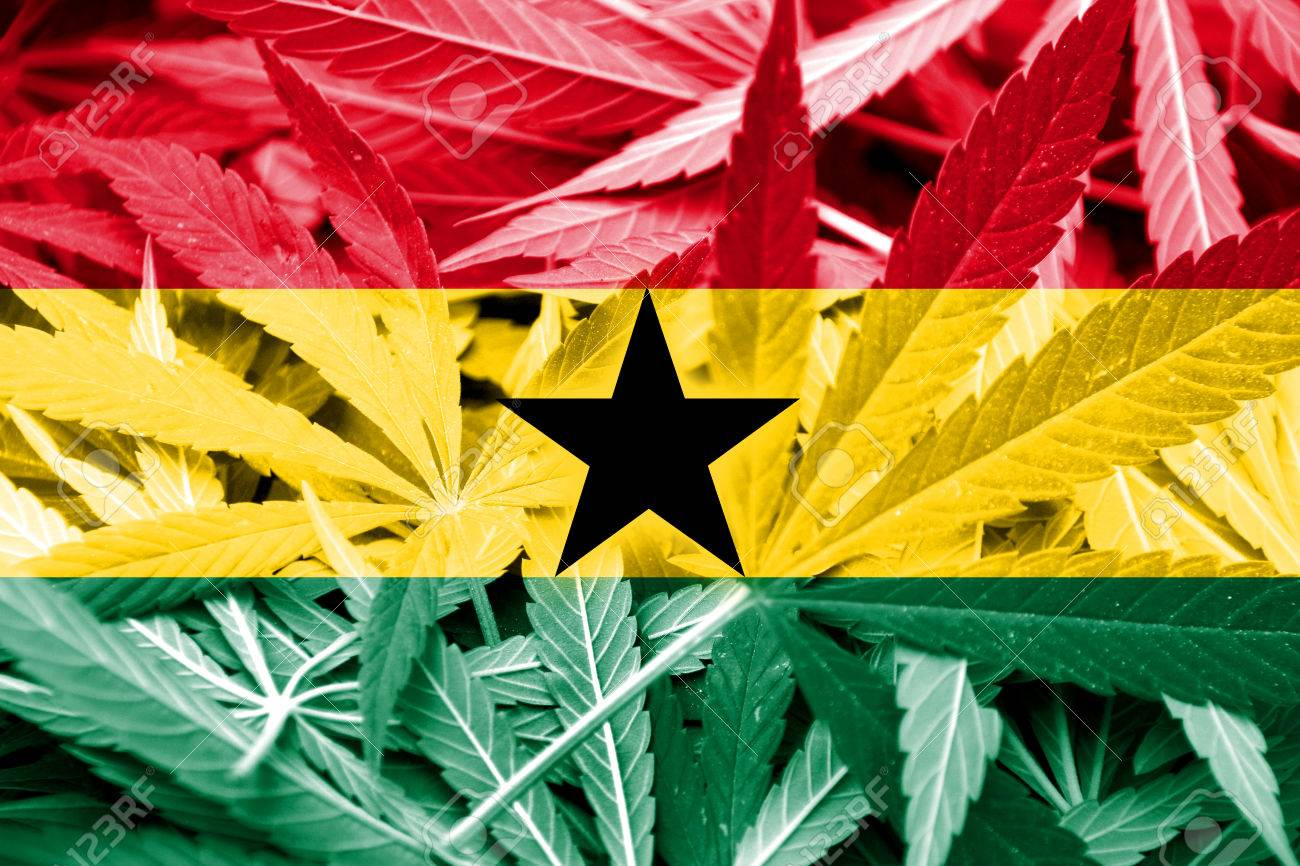 Read more about the article Which African country is legalizing cannabis?