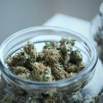 Will covid-economics accelerate cannabis decriminalization?